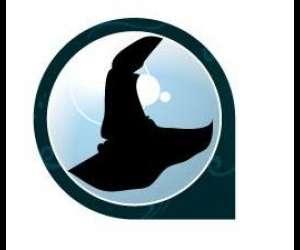 Le labo de merlin (sarl)