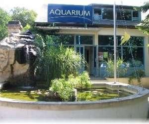 Aquarium de loudun