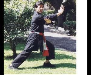 Viet vo dao art martial vietnamien (style thanh long tr