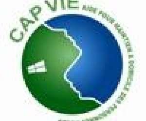 Capvie 17