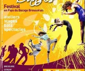 Festival terre de danses
