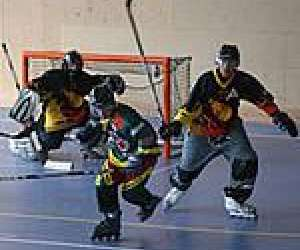 Roller hockey niortais