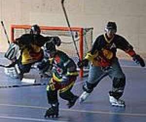 Roller hockey niortais