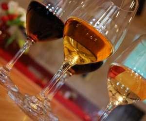 Wine océan  -  wine days  -    cours d