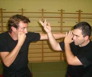 Gsd haute saintonge -club de self defense