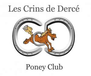 Les crins de derce poney club