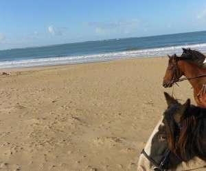 Ferme equestre de corme ecluse