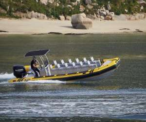 Speed boat la rochelle - balade en mer