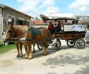 Caval tour 16