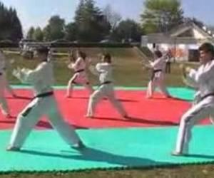Ecole niortaise de taekwondo