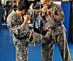 Arts martiaux mixtes coréens kyeok sul do