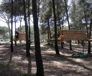 Pastre aventure (parc acrobatique forestier)