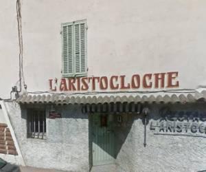 Aristocloche (l