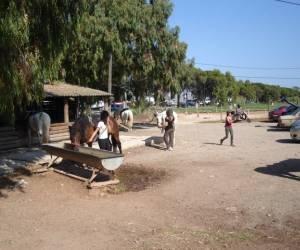 Ranch du palyvestre
