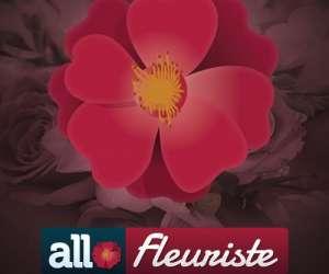 Allo-fleuriste nice