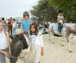 Poney club ecole equitation