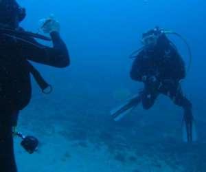 Club de plongée nausicaa