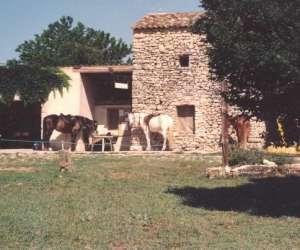 Centre equestre pegase