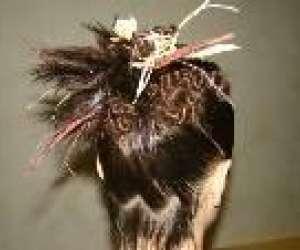 Mure - coiffure