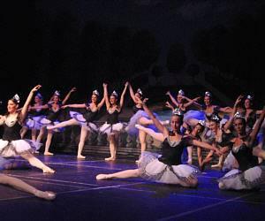 association vivre la danse