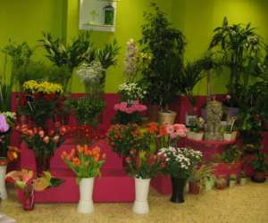 Fleuriste aux fleurs d