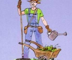 Jardinage, bricolage et services