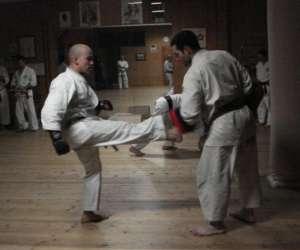 Karate goju-ryu sisteron