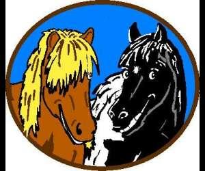 Les chevaux du bessillon - initiations et découverte du