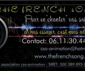 Groupe the french song  de variété française