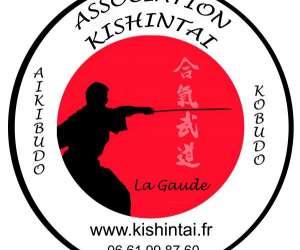 Aikibudo, self-defense, iaijutsu, kenjutsu