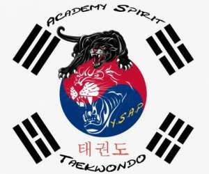 Academy spirit y.s.a.p taekwondo