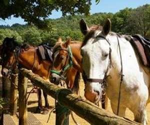 Verdon equitation