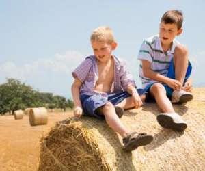 Kaléidoscope - atelier vie a la ferme