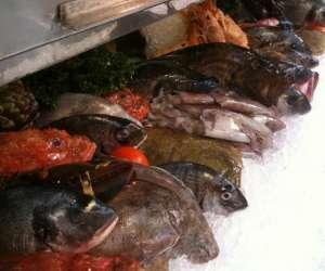 Restaurant de poisson fred lecailler