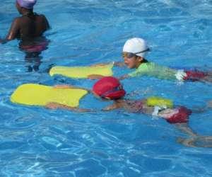 Graines de nageurs