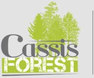 Accrobranche cassisforest