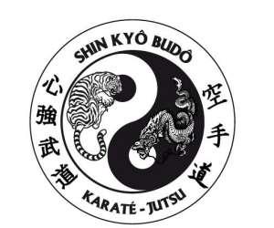 Shin kyo budo