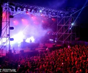 Kolorz festival