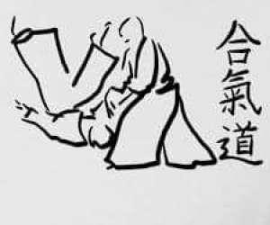Aikido-baronnies