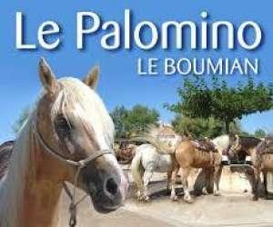 Promenade a cheval le palomino