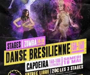 Zumba capoeira danse brésilienne