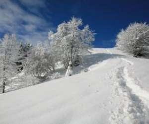 Altitude nature au pays du mont-blanc