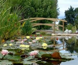 Musée vivant de la plante aquatique / les jardins aquat