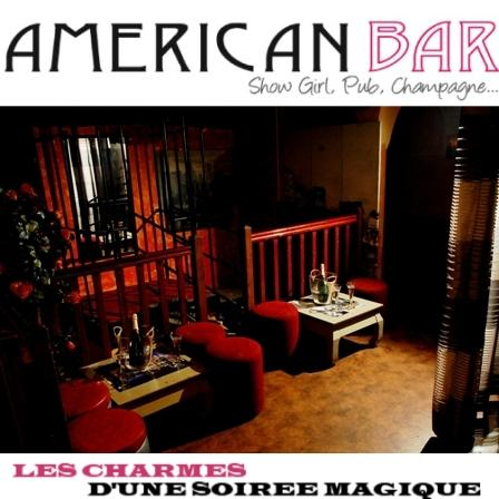 american bar show girl pub champagne lyon 69005. Black Bedroom Furniture Sets. Home Design Ideas