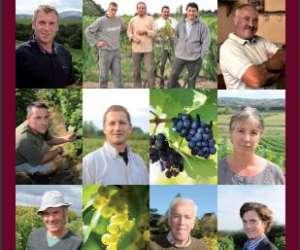 Fédération des vins des coteaux du lyonnais