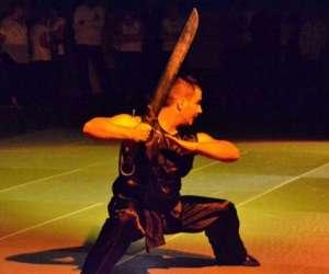 Kung-fu wushu du 8 eme, taichi