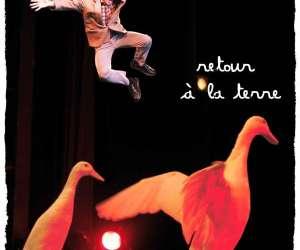 Cirque filyfolia