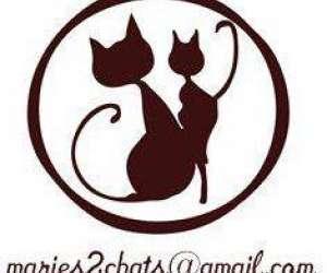 Mariés, 2 chats