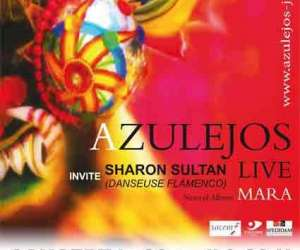 Association azuejos - concert   flamenco- jazz