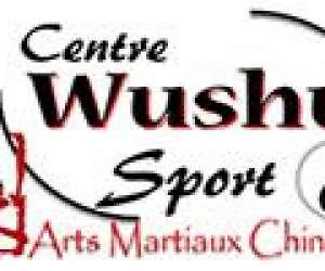 Centre wushu sport